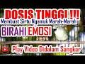 Dosis Tinggi Bikin Cipoh Sirtu Ngamuk Marah  Mp3 - Mp4 Download
