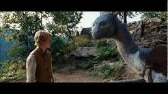 Eragon & Saphira