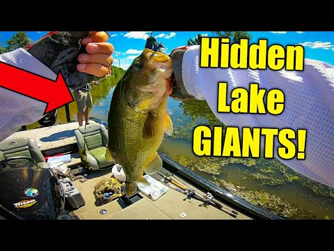 Fishing A HIDDEN Wisconsin Lake!! ( There Are GIANTS!!) 2020