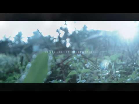 6 SECOND VFX : Cinematic lens flare