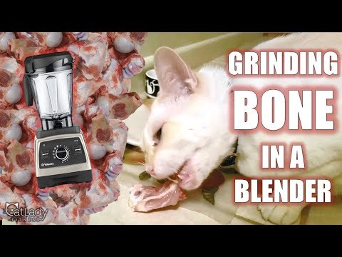 How To GRIND BONES At Home (for Homemade Raw Cat Food!) - Cat Lady Fitness