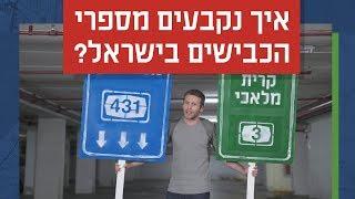 כאן סקרנים | איך נקבעים מספרי הכבישים בישראל?