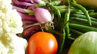 Free Seeds | Where To Get Free Organic Vegetable and Flower Garden Seeds Free Shipping Online