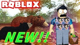 ROBLOX NEW WILD FOREST - GRIZZLY BEARS, BLACK BEARS (Lets Play Wild Animals, Wildlife)