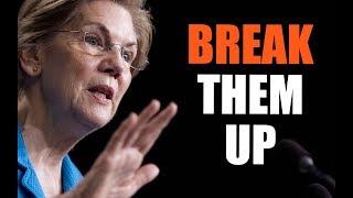Should the Gov't Breakup FB, AMZ and Google? Sen. Elizabeth Warren Thinks So.
