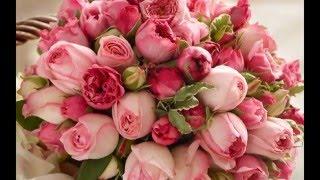 Купить цветы с доставкой(http://cveti-voronezh.ru/ Купить цветы с доставкой. Доставка цветов в Воронеже. Букеты цветов на заказ. Мы доставляем..., 2016-03-23T10:22:21.000Z)