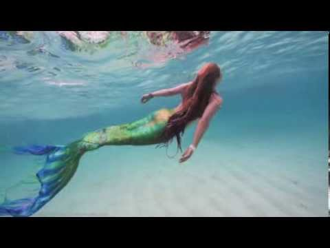 Swimming Mermaid with Whale Sharks
