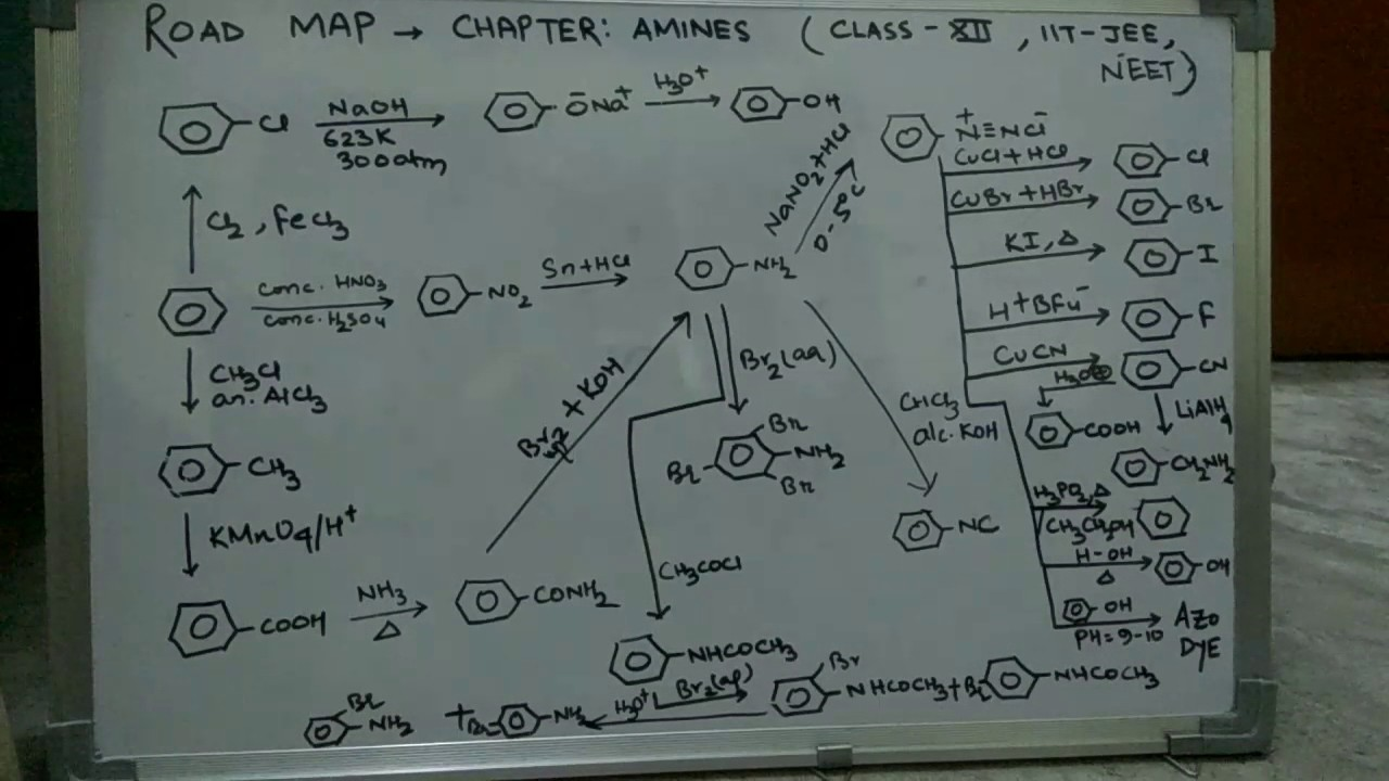 Chemistry Road Map Amines Class 12 Jee Mains And Advanced Neet