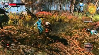 Ведьмак 3 Дикая Охота - сравнение графики PS4 и PC The Witcher 3 Wild Hunt