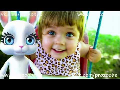 ZOOBE Зайка поздравляет С Днем Девочек 11 октября   Поздравления от Зуби Зайки Домашней Хозяйки - Ржачные видео приколы