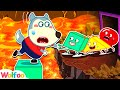 Wolfoo Plays The Foor Is Lava Challenge with Colorful Talking Shapes | Wolfoo Family Kids Cartoon
