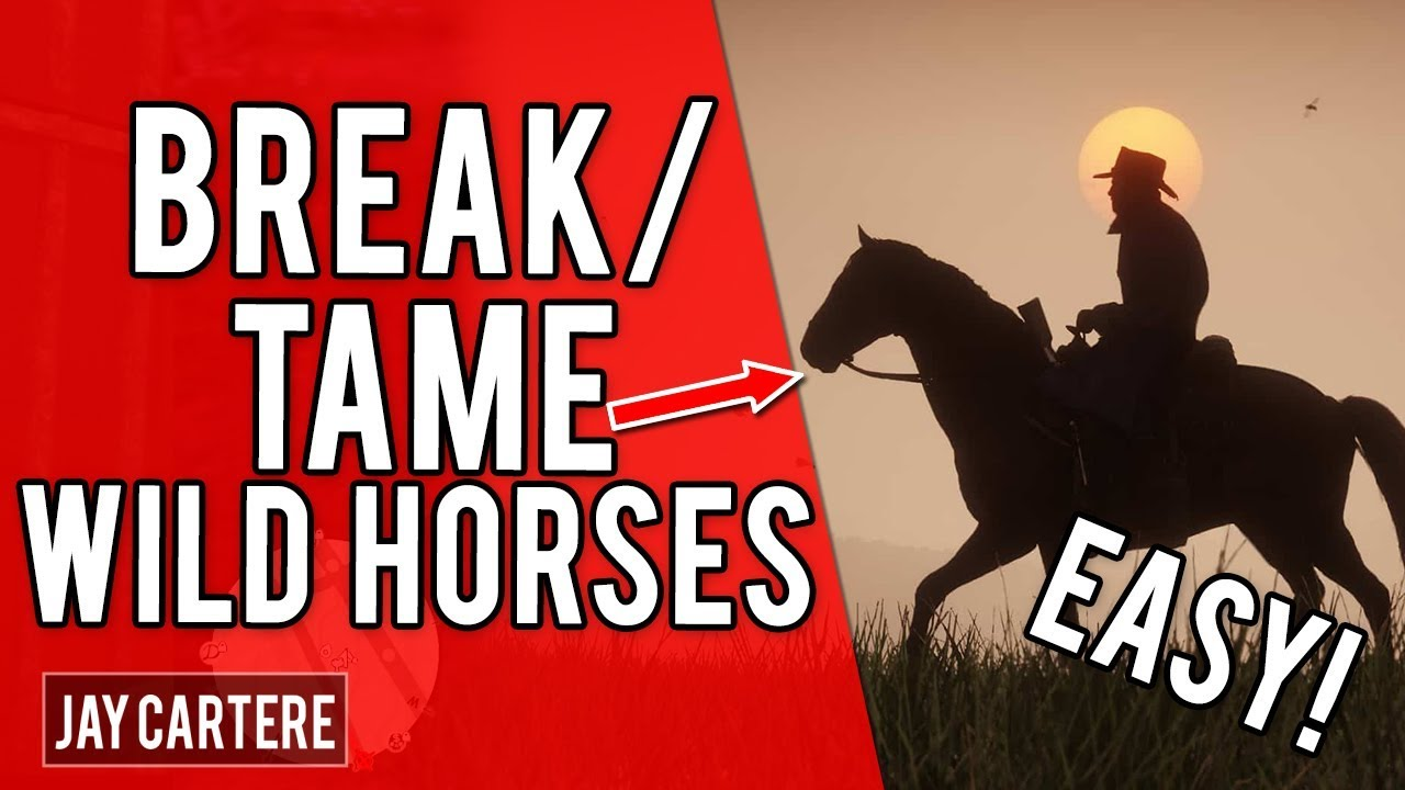 Red Dead Redemption 2 Ps4 Tutorial How To Break A Wild Horse How