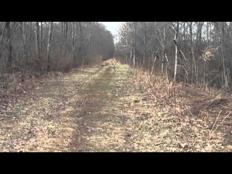 Neponset River Greenway Canton MA Fowl Meadow Part 3.