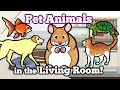 Cute Pet Animals in the Living Room   Domestic Animals for Kids
