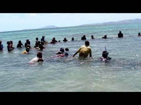 Poaching: Stealing Fiji's Future