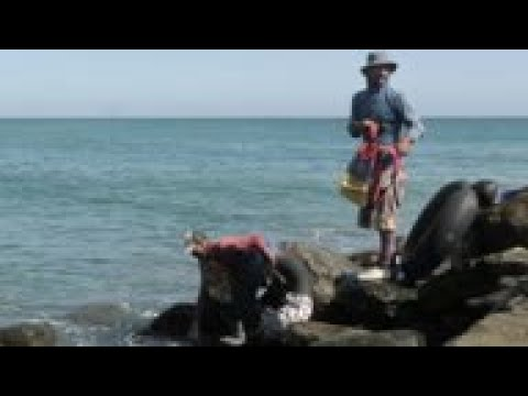 Venezuelans Turn To High Sea On Tubes To Fishing