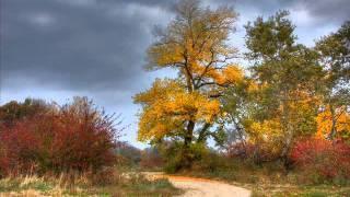 Musica relajante - Beethoven - Sonata Pathétique - 1st Grave - allegro di molto e con brio.