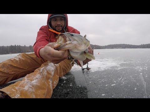 New Ice Fishing Personal Best Largemouth Landed In Connecticut 2018
