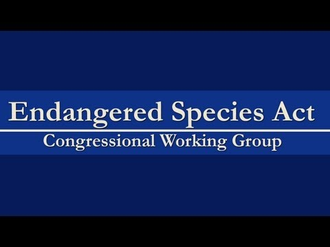 Endangered Species Act Congressional Working Group Forum