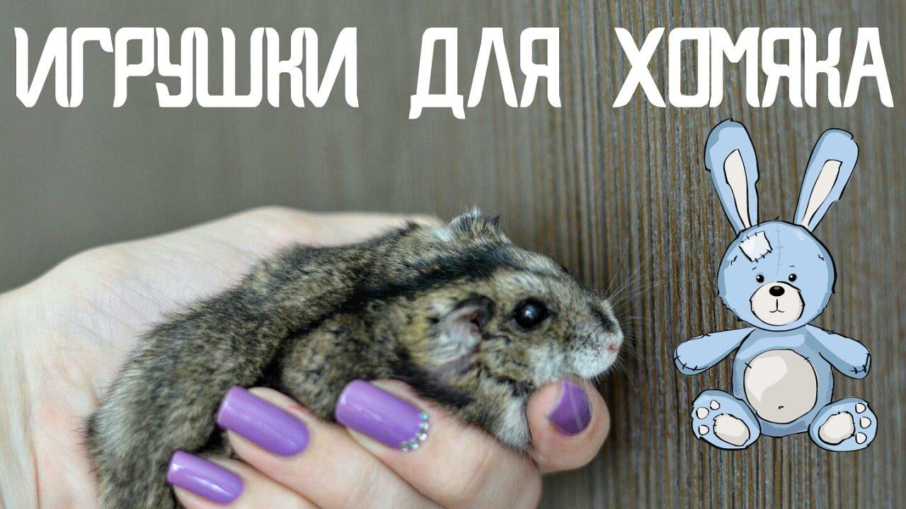 Как сделать игрушки для хомяков своими руками фото 956