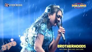 Potret Tua - New Pallapa [Brotherhoods]  Werdi 2017 MP3