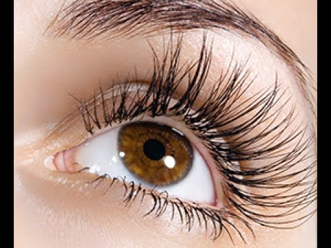 How To Grow MASSIVE Eyelashes FAST!!!!!!