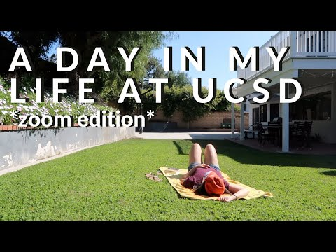 A Day In My Life At UCSD *online*