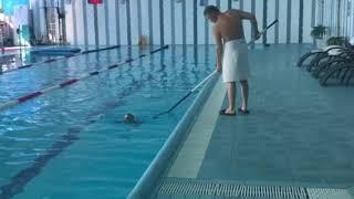 Ребёнок плавает в 2 года