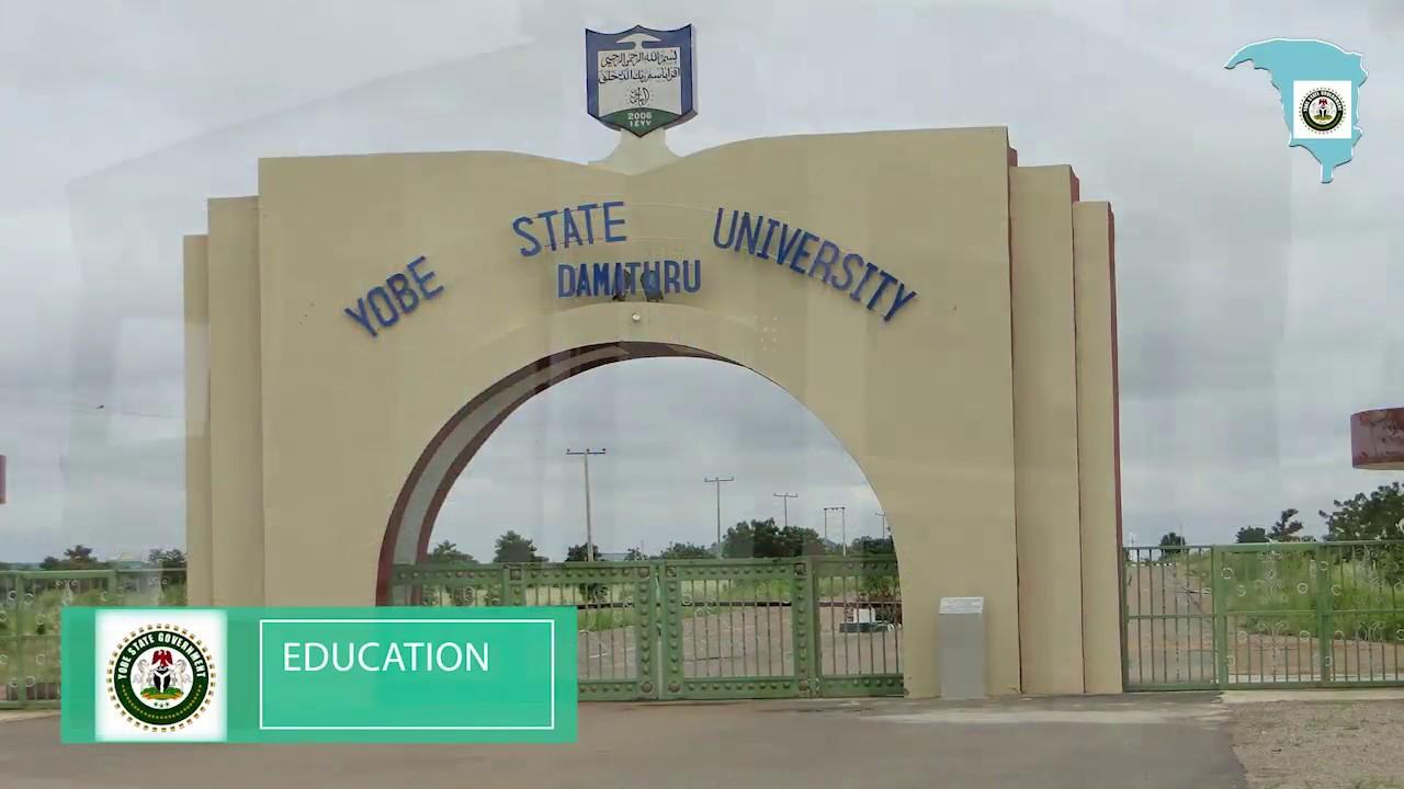 Main Entrance, Yobe State University. Photo: Daily Trust