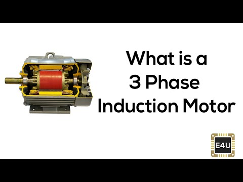 Induction Motor Working Principle Types of Induction Motor