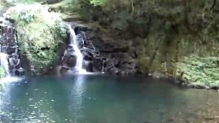 三重県名張市にある赤目四十八滝にある、赤目五滝の一つです。 高さ8m...