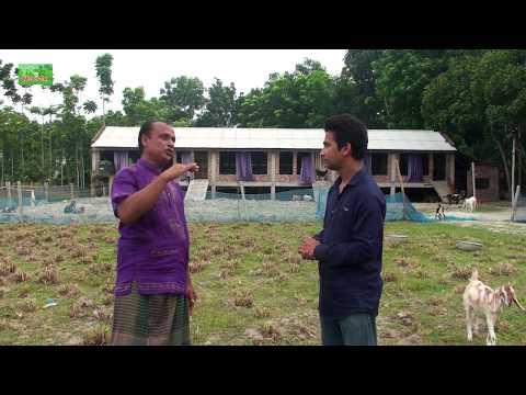 Bangladeshi biggest goat farm - সফল ছাগল খামারী জালাল উদ্দিন