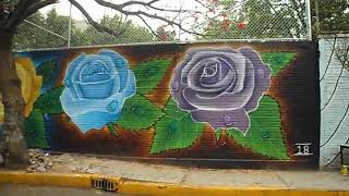 #Graffiti de rosas