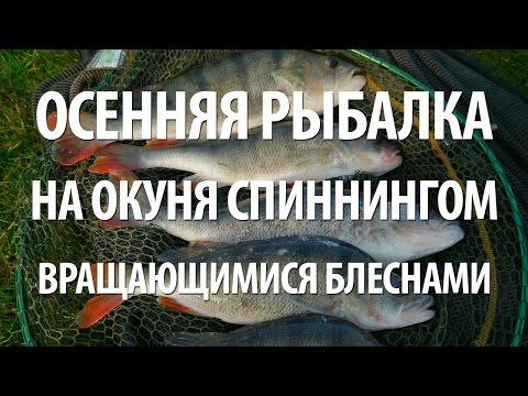Видео ловля окуня с лодки