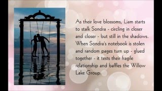 The Willow Lake Group book trailer