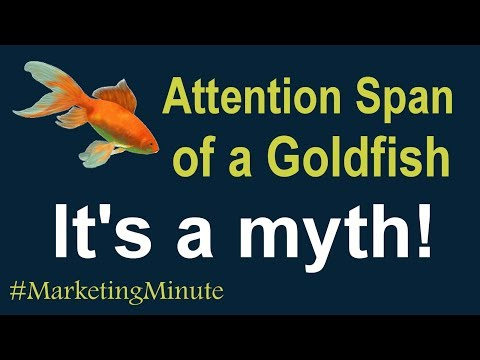 "Marketing Minute 124 ""The Myth – Attention Span Of A Goldfish"" (Customer Insights/Analytics)"