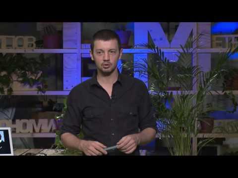БМ ТВ  Павел Кочкин \'Женское предназначение  План или пропал   совместное видение\' 08 12 2015