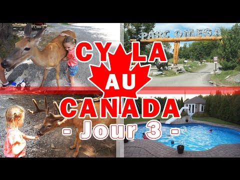 [Daily Vlogs CyLa au Canada] Jour 3 - Rencontre avec les animaux sauvages