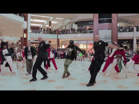 WEB EXTRA: Police Officers Join Flash Mob Performance At Aventura Mall