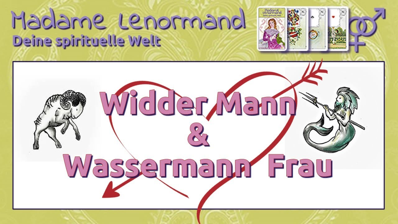 wassermann partner widder