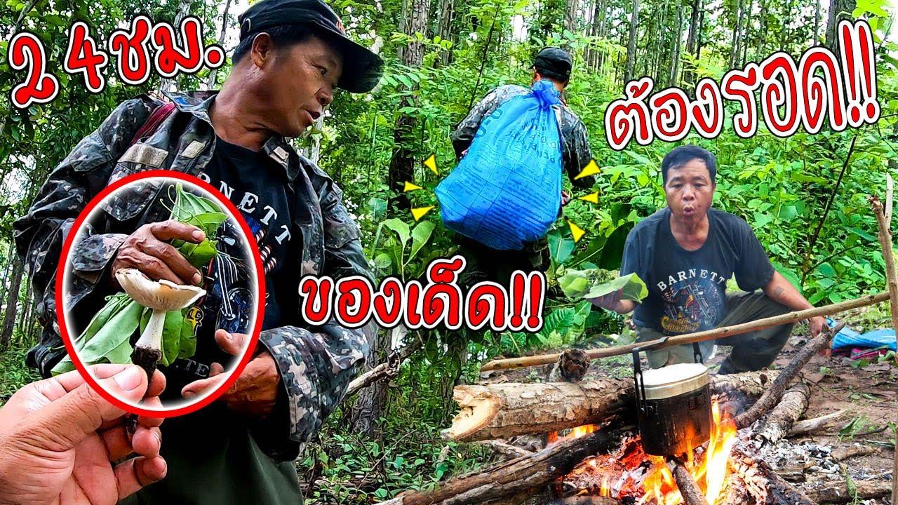 เอาชีวิตรอดกับพ่อ EP.5 เอาชีวิตรอด 24 ชม ในป่าตึง ทำอาหารป่า สูตรครัวป่าไผ่ l SAN CE