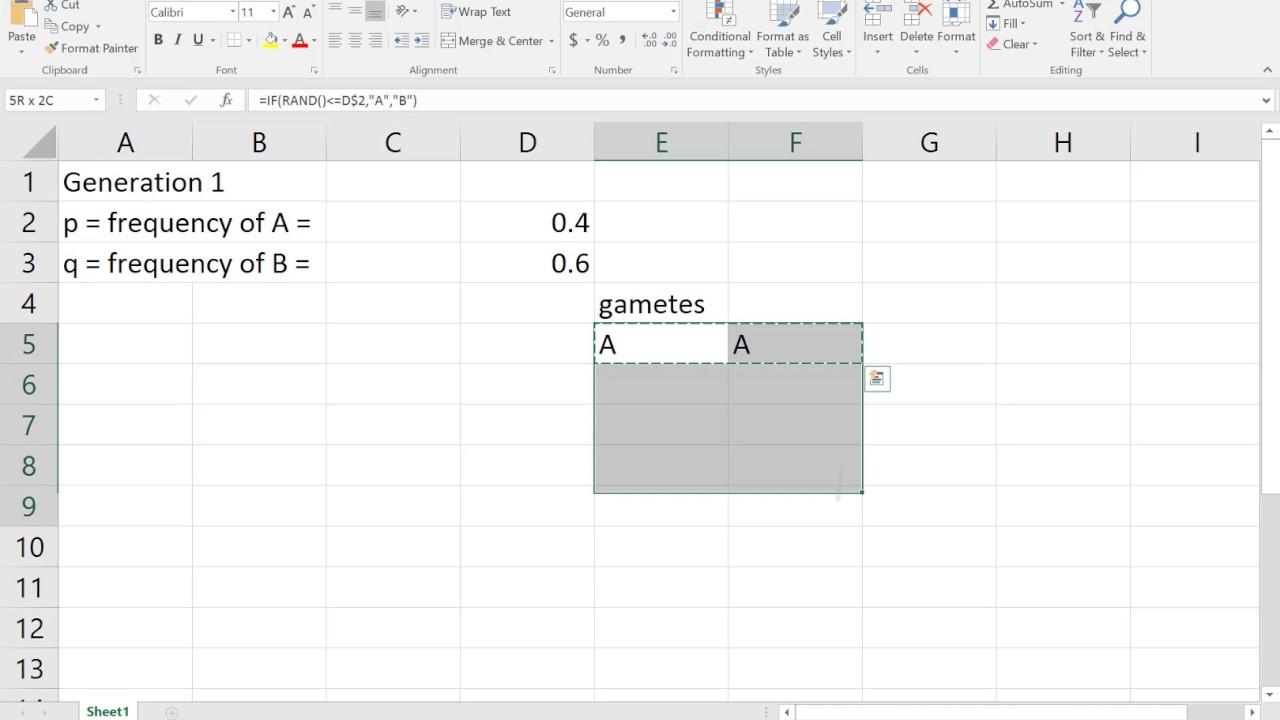 Lab 2 AP Bio Hardy Weinberg Math Modeling using Excel Part I - YouTube