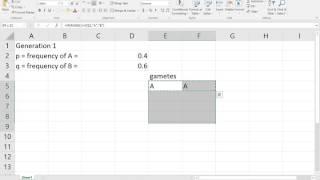 Lab 2 AP Bio Hardy Weinberg Matematik Modelleme Excel Bölümünü kullanarak ben