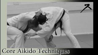 Aikido techniques versus jiu-jitsu techniques 1