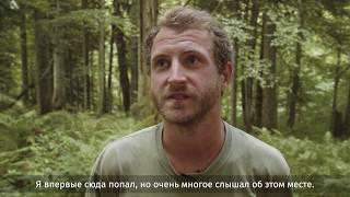 Фото Харгинский Лес – место удивительных открытий