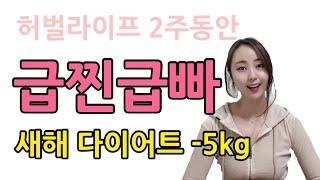 새해다이어트 급찐급빠 2주에 -5kg 허벌라이프 노하우…