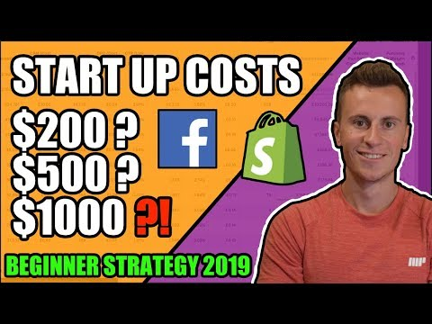 How Much Money Do You Need To Start Dropshipping in 2019? Beginner Strategy thumbnail