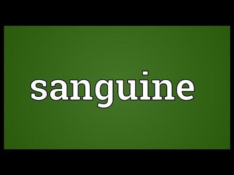 Sanguine Meaning