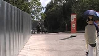 沖縄   首里城 「守礼の門」 守礼門 検索動画 34