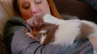 Exotic Animals Are Stealing Pet Lovers' Hearts